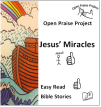 Front cover of Jesus' Miracles